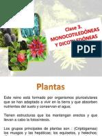 3.ClaseMonocotiledonea y Dicotiledonea