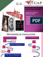 hemofilia   expo ppt.pptx