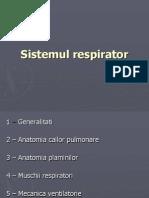 Anatomie Sistem RESPIRATOR