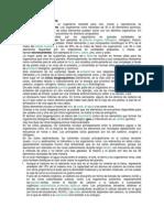 CICLOS BIOGEOQUIMICOS.docx