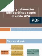 APA 2013 (1)