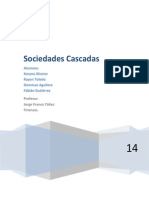 Analisis Completo Caso Cascada