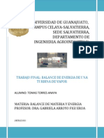 UNIVERSIDAD DE GUANAJUATO.docx