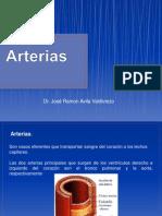 2= Arterias