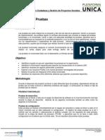 Estrategia Pruebas PDF