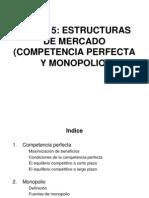 Parte 5 Estructura Del Mercado
