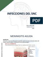Ifecciones Del Sistema Nervioso