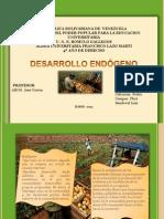 Presentación1 desarrollo endogeno