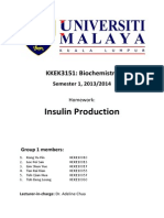 Production of Insulin