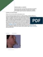 DESPROGRAMADORES NEUROMUSCULARES4