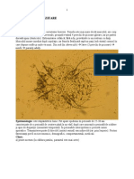 Curs 8 dermatoze parazitare