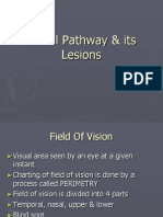 Visual Pathway & Its Lesions