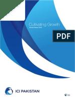 ICIP Sustainability Report 2013