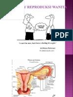 Organ reproduksi pada wanita