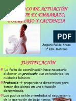 Actuación durante el embarazo, puerperio y lactancia