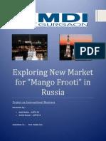 International Business Project - Mango Frooti