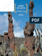 Jardin de Cactus I