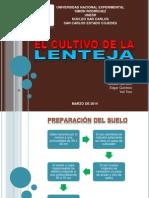 Cultivo de La Lenteja (Edgar Quintero)