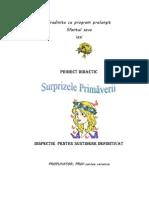 Proiect Didactic Primavara