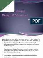 Org Design & Structure