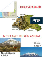 BOLIVIA-BIODIVERSIDAD.ppt