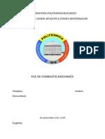 Pile Electrochimice