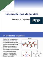 sem2cap3bioquimica-110203095301-phpapp02