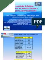 palestra12_fitoremediação de rejeitos contaminados com mercúrio