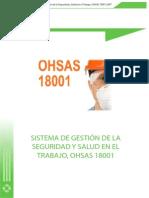 SISTEMA DE GESTIÓN DE LA SEGURIDAD Y SALUD EN EL TRABAJO, OHSAS 18001