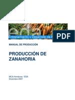 EDA Manual Produccion Zanahoria 12 07