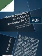 Microorganismos en El Medio Ambiente AGUA