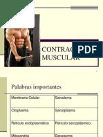 contraccionmuscular-090805212430-phpapp02 (1)