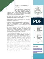 CDPLP-Circular Institucional Nº 2 de la Primera Instancia de Tratamiento de la Ley del Politólogo Boliviano-27.03.14