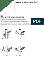 RADIOANATOMIE DU PANCRÉAS.pdf