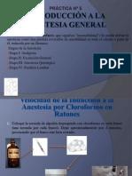 Anestèsicos Generales.pptx