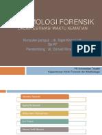 entomologi forensik
