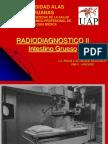 Radiodiagnostico Del Intestino Grueso