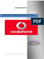 Vodafone Pallabi
