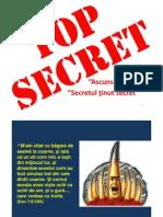 Microsoft PowerPoint - SocietatileSecrete1