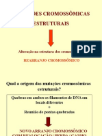 MutaçãoCromossômicaEstrutural 2013