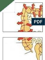 Rph t4 Cantuman Struktur Utk Letak Papan Hitam