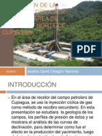 EVALUACIÓN DE LA INYECCIÓN CÍCLICA DE GAS EN