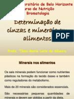 Determinacao de Cinzas e Minerais Em