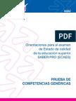 Guia_Competencias_Genericas_2011.pdf
