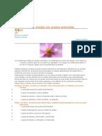 Aromaterapia y Masaje Con Aceites Esenciales