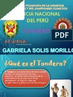 Tondero Gabriela