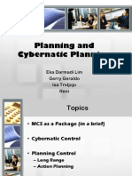 Planning and Cybernetic Control
