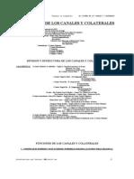 6-El Sistema de Los Canales y Colaterales