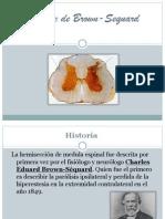 sndromedebrown-sequardohemiseccindelamedula-120422091255-phpapp02
