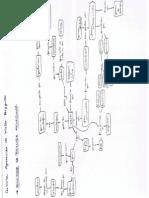 Mapa Conceitual DNA